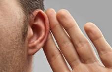 Alig észrevehető, de rájöttek: az ember is képes hegyezni a fülét