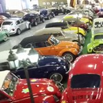 Eladó a világ legnagyobb Bogár-gyűjteménye