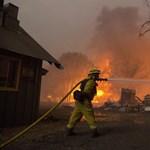 Lassú a kárfelmérés a kaliforniai erdőtüzek után