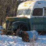 Meghalt a nő, aki egy mágikus buszt keresett az alaszkai vadonban