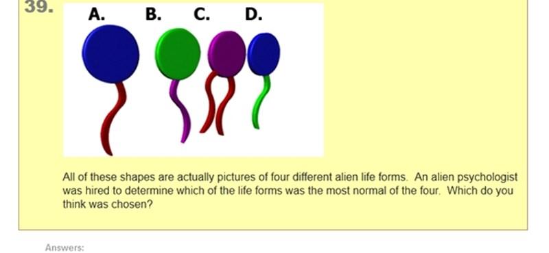 Hány pontot érnél el az IQ-teszten? A legjobb online kvízek