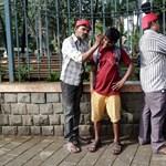 Több százan csinálnak egy bizarr munkát bagóért Mumbai utcáin – fotók