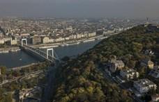 Budapestért kampányol Rózsa György