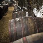 Tokaji borász ellen indult eljárás