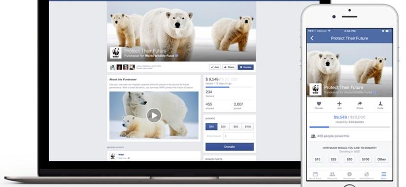Pénzgyűjtős funkció a Facebookon