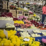 A virágosok Mekkája itt van a Csepel-szigeten