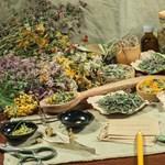 Gyógynövényekkel a stresszdepresszió ellen?