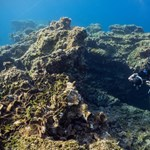 2300 éves hajóroncsot találtak az Égei-tenger mélyén, rakomány is fennmaradt