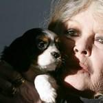 Brigitte Bardot levelet írt Orbán Viktornak
