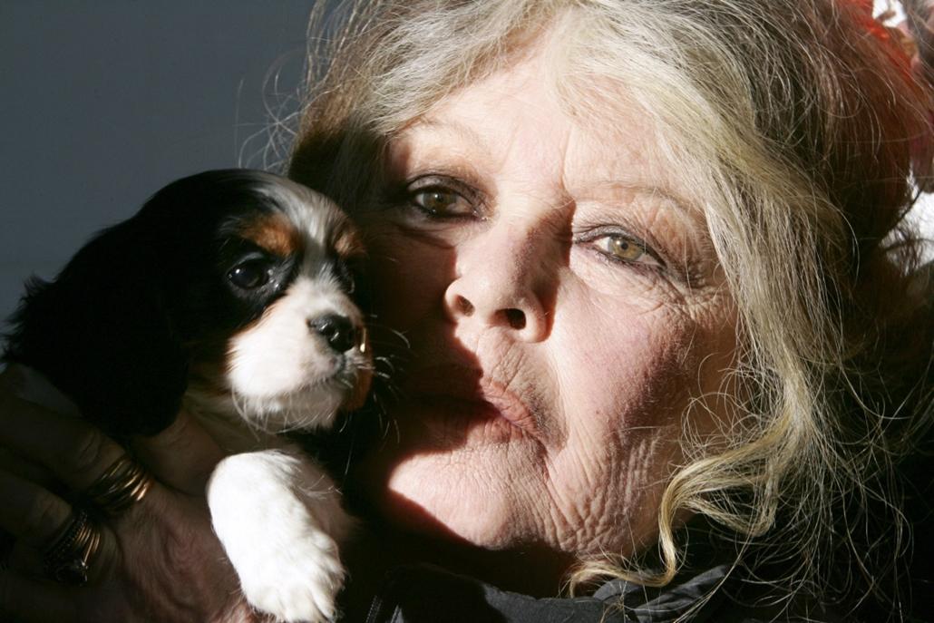 afp.05.12.28. - Nizza, Franciaország: . - Brigitte Bardot nagyítás