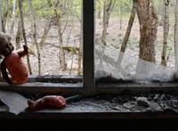 Ukrajna világörökségi listára tenné Csernobilt