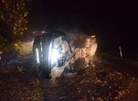 Jogsi nélkül, részegen, bekábítózva csapódott a fának autójával
