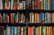 Régi és mai magyar panoptikum – online és offline olvasnivalók a nyárra