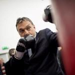 A Kerítéskirály kampánymanővere – német lapok Orbán határvédelmi igényéről