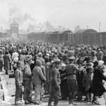 Elítélték a holokauszttagadó brit bloggert