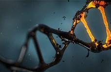 Egy új teszt 10 perc alatt, 90%-os pontossággal kimutatja, ha valaki rákos