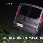 Feladta magát a balesetet okozó sofőr, akit kutyával kerestek a karambol után