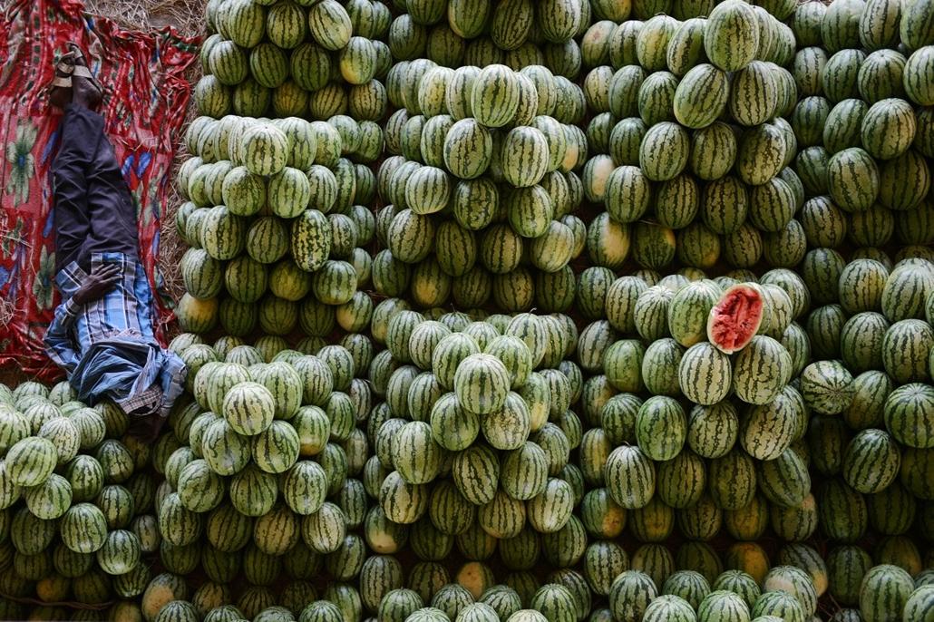 afp.14.03.19. - Hyderabad, India: farmer és görögdinnyéi a Gaddiannaram gyümölcspiacon - 7képei