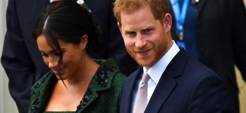 Harry herceg szerint a nagysikerű Fortnite veszélyes, és be kellene tiltani