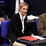 """""""Mindig a másik a náci"""": Az AfD felemelkedése és Merkel felelőssége"""