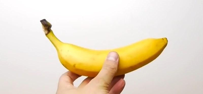 Milliókért kelt el egy falra felragasztott banán