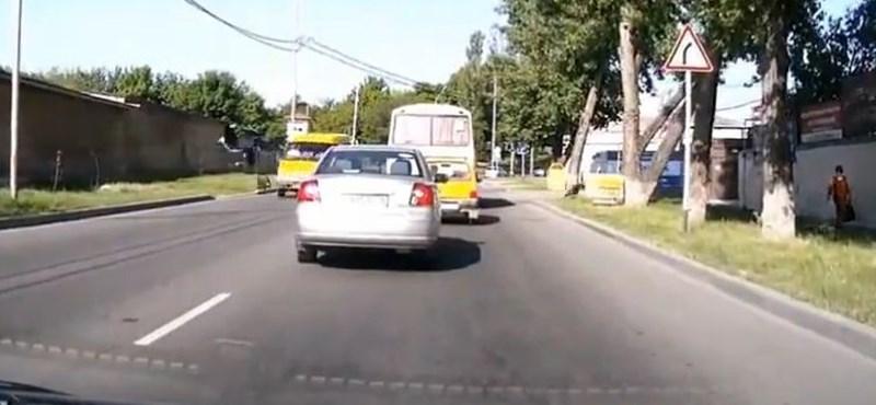 Videó: Így lesz mikrobuszos gázolás egy kutyatámadásból