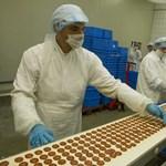 Tovább süllyedő húsgyárakba öntik a milliárdokat