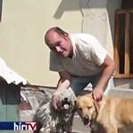 Vakvezető kutya nélkül maradhat egy látássérült pár a szomszédok panasza miatt
