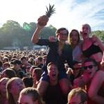 A Szigeten fellépő zenekar miatt már ananászt (!) sem lehet fesztiválra vinni?