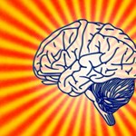 Agyi stimulációval sikerült megfiatalítaniuk a memóriát amerikai tudósoknak