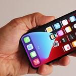 Két olcsóbb iPhone is megjelenhet idén