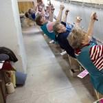 A magyar kisvállalkozások túl kicsik és túl gyengék
