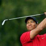 """""""Tiger Woods továbbra is egy nagy dagadt hazudozó."""""""