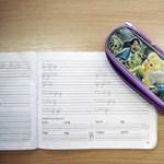 Egyetlen iskola sem akar fogadni egy hatéves hiperaktív kisfiút Borsodban