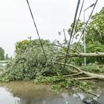 Több mint fél napja nincs áram Budapest egyes részein, megszólalt az Elmű