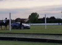 Videó: ilyen egy több száz lóerős Tesla és egy ló versenye