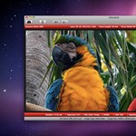 Sofortbild: Nikon kamerák távirányítása Macen