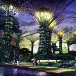 A világ legújabb csodája Szingapúrban? Napelemes fák, hatalmas kivilágított függőkertek