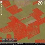 Rémálomszerű erdőpusztulást leplezett le a Google