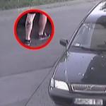 Bambis tetkója buktatta le a fizetés nélkül távozó benzintolvajt Pécsen
