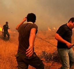 Az erdőtüzek már Athént fenyegetik - Nagyítás