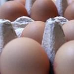 Olcsóbb lett a tojás