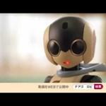 Mindenki megépítheti a saját Robot Robiját