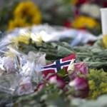 A norvég mészáros azt állítja, egyedül ölt