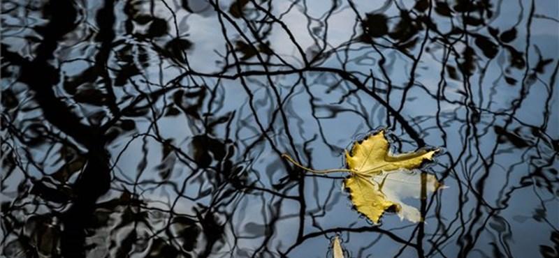 Folytatódik a hűvös őszi idő