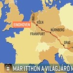 Igazi karácsonyi történet: hazatért az Eindhovenig utazó tamási kandúr