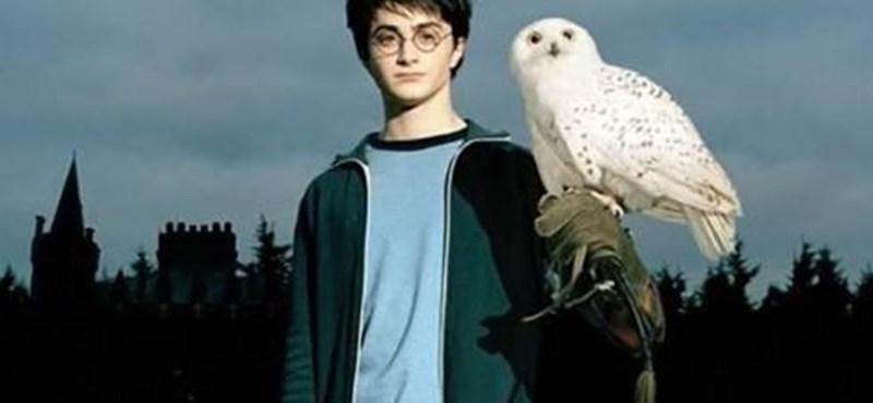 Varázslatos kvíz reggelre: pengék vagytok a Harry Potter-sztoriból? Teszteljétek