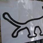 A kutyapártnak kedvező döntést hozott a Nemzeti Választási Bizottság