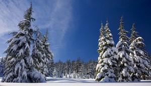 Több iskola zárva maradt az Egyesült Államokban a havazás miatt