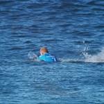 Újabb szörfös küzdött meg egy cápával